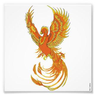 Impresión de levantamiento de la foto de Phoenix