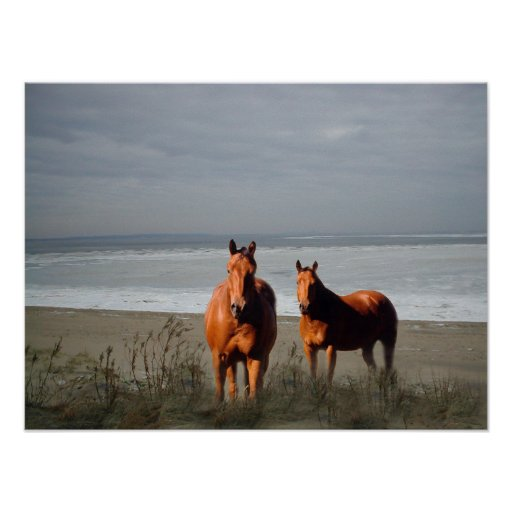 Impresión de los caballos de la playa posters