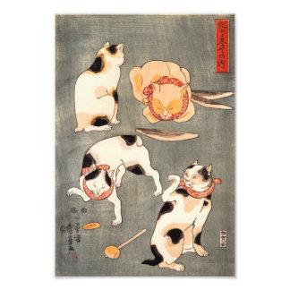 Impresión de los gatos de Kuniyoshi cuatro Impresiones Fotograficas