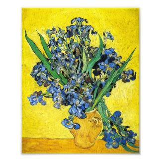 Impresión de los iris de Van Gogh Impresion Fotografica