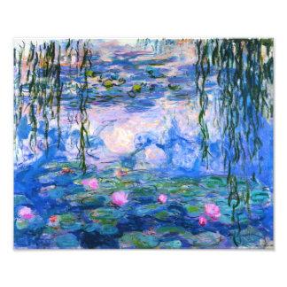 Impresión de los lirios de agua de Monet Fotografía