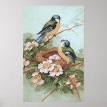 Impresión de los pájaros del vintage impresiones