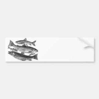 Impresión de los pescados pegatina para auto