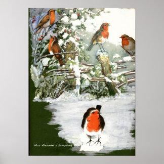 Impresión de los petirrojos del libro de recuerdos póster