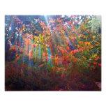 Impresión de los rayos de Sun Foto