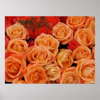 Impresión de los rosas póster