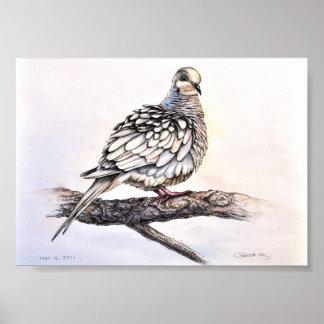 Impresión de luto de la paloma póster