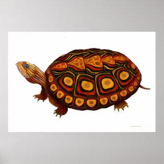 Impresión de madera centroamericana de la tortuga