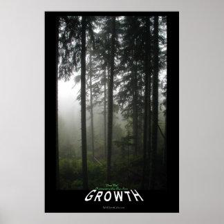Impresión de motivación de la foto del bosque brum poster
