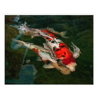 Impresión de Nishikigoi Arte Fotográfico