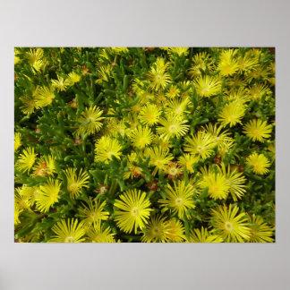 Impresión de oro del poster de las flores del hiel