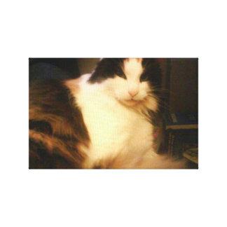 Impresión de pelo largo mullida de la lona del gat lienzo envuelto para galerias