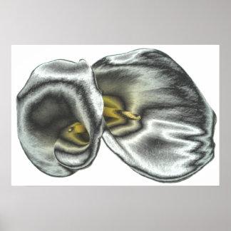 Impresión de plata de los lirios de Arum