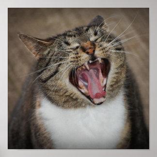 Impresión de risa del gato de la ha ha ha