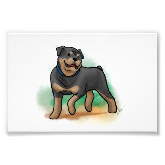 Impresión de Rottweiler Fotografía