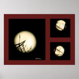 Impresión de sombra de la luna posters