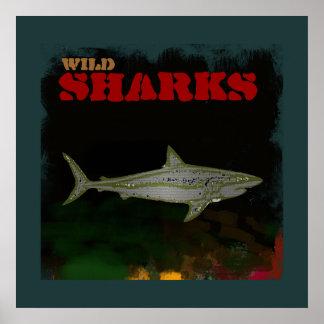 impresión decorativa del tiburón póster