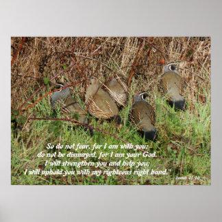Impresión del 41:10 de Isaías de los pájaros de la Póster