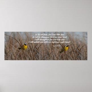Impresión del 41:10 de Isaías de los pájaros de lo