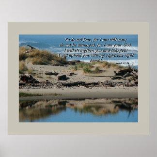 Impresión del 41:10 de la playa del Driftwood y de Póster