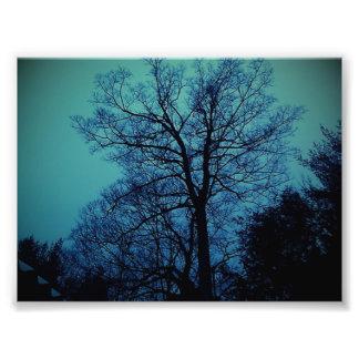 Impresión del árbol del espectro fotografías