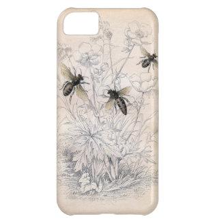 Impresión del arte de la abeja de la miel del vint funda para iPhone 5C