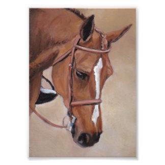 Impresión del arte de la cabeza de caballo fotografía