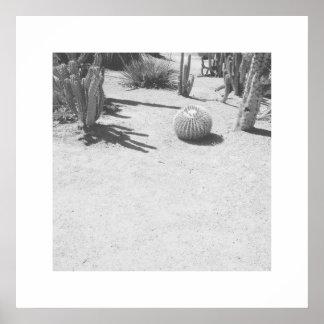 Impresión del arte de la foto de los cactus -