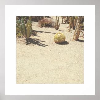 Impresión del arte de la foto de los cactus