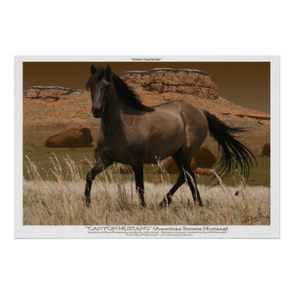 Impresión del arte de la protección del caballo póster