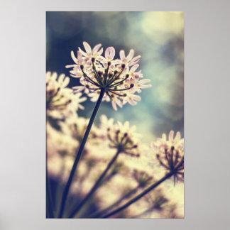 Impresión del arte de las flores del cordón de la posters