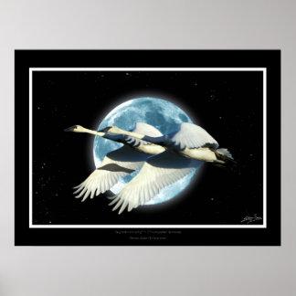 Impresión del arte de los cisnes de trompetista