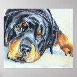 Impresión del arte de Rottweiler Póster