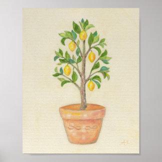 Impresión del arte del árbol de limón póster