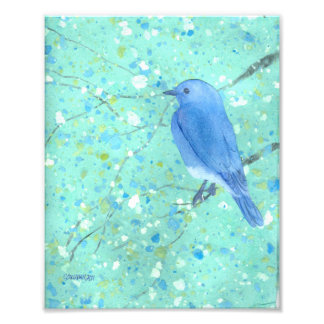 Impresión del arte del Bluebird Fotografía