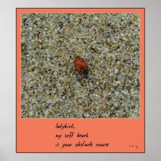 Impresión del arte del Haiku de la mariquita Póster