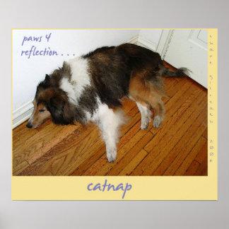 Impresión del arte del Haiku del Catnap Póster