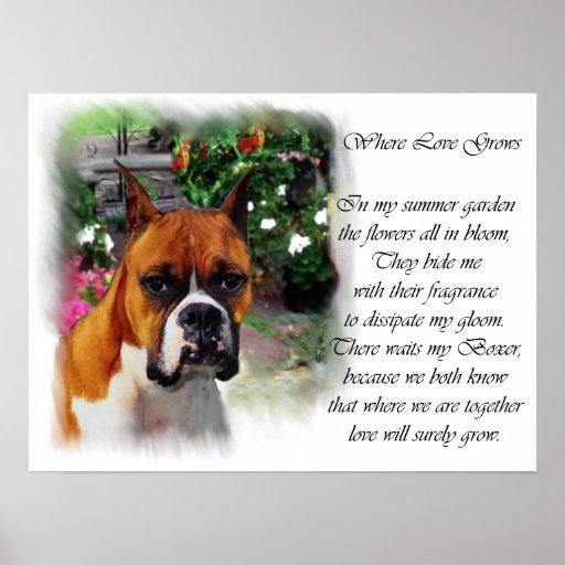 Impresión del arte del perro del boxeador poster