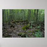 Impresión del bosque de Michigan Impresiones
