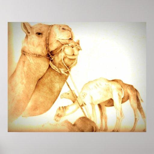 Impresión del camello poster