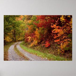 Impresión del camino del otoño posters
