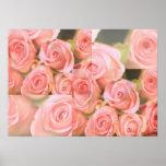 Impresión del capullo de rosa impresiones