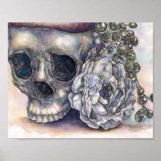 Impresión del cráneo póster