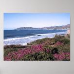 Impresión del día de la playa de Pismo