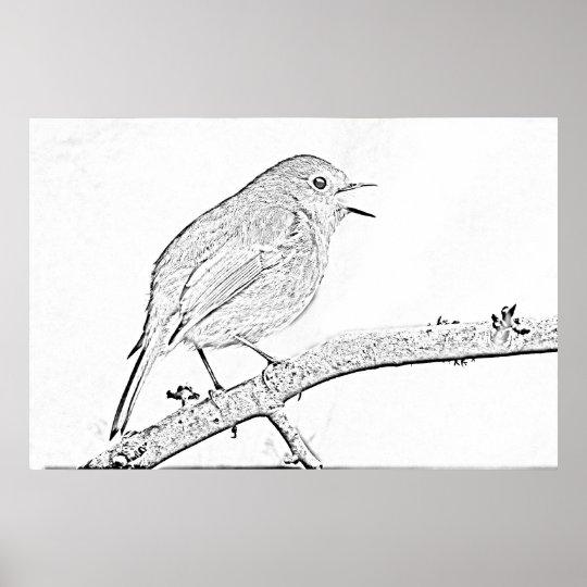 Impresión del dibujo del petirrojo