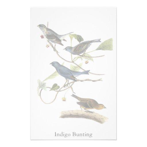 Impresión del empavesado de añil de Audubon Papeleria Personalizada