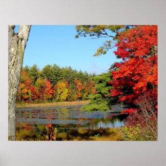 Impresión del follaje de octubre