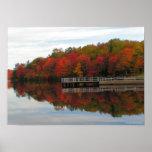 Impresión del follaje de otoño poster
