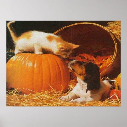 Impresión del gatito, de la calabaza y del perrito póster