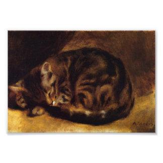Impresión del gato el dormir de Renoir Fotos